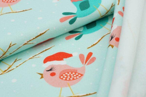 Kuscheliger Baumwollsweat Digitaldruck Winter Vögel mit Mützen / Zweige auf mint