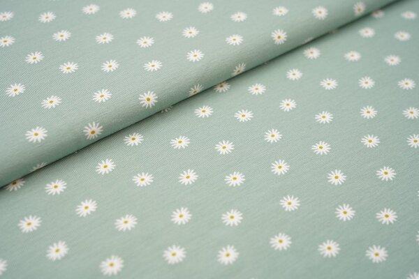 Baumwoll-Jersey Gänseblümchen auf altmint Blumen in weiß und olivgelb