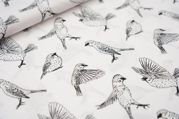 Baumwollstoff Vögel Vogel weiß / schwarz