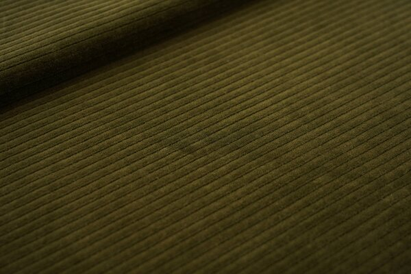 Breitcord Jersey uni olivgrün