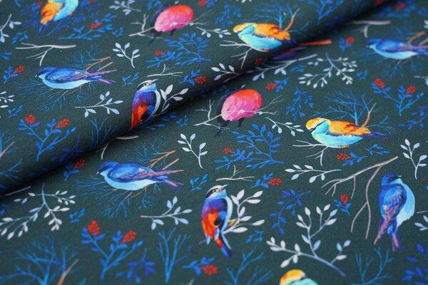 Traumbeere Baumwoll-Jersey Digitaldruck bunte Vögel Zweige auf dunkelgrau Vogel Blätter