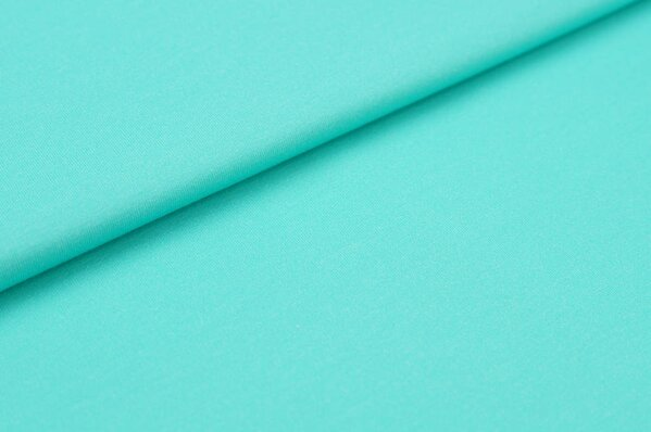 Baumwoll-Jersey Digitaldruck uni mint