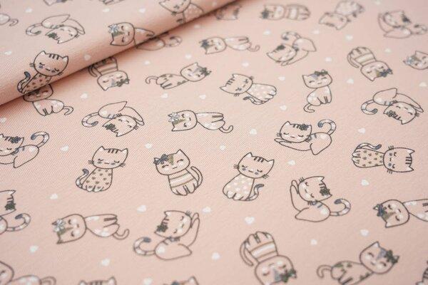 Baumwoll-Jersey Katzen und Herzen auf pastell lachs