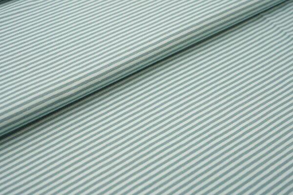 Baumwoll-Jersey Streifen Ringel mint / altmint