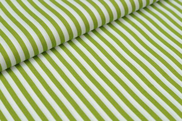 Baumwollstoff Baumwolle Streifen grün / weiß