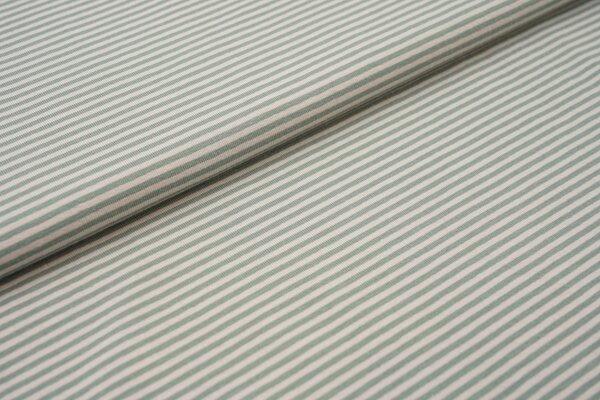 Baumwoll-Jersey Streifen Ringel hellgrau / altmint