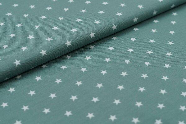 Baumwoll-Jersey kleine Sterne dunkel altmint / altmint